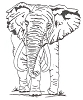 African Wildlife Designs - Elephant - Crystal Engraving Design