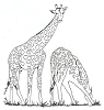 African Wildlife Designs - Giraffe - Crystal Engraving Design