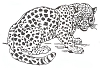 African Wildlife Designs - Leopard - Crystal Engraving Design