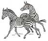 African Wildlife Designs - Zebra - Crystal Engraving Design