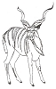 African Wildlife Designs - Greater Kudu - Crystal Engraving Design
