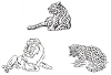 African Wildlife Designs - African Cats - Crystal Engraving Design