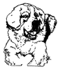 Dogs - St. Bernard - Crystal Engraving Design