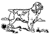 Dogs - English Springer - Crystal Engraving Design