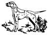 Dogs - Pointer - Crystal Engraving Design