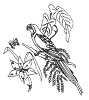 Hawaiian-Tropical Designs - Tropical Parrrot - Crystal Engraving Design