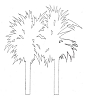 Hawaiian-Tropical Designs - Palm Trees#2 - Crystal Engraving Design