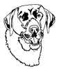 Dogs - Lab Head - Crystal Engraving Design