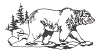 North American Wildlife Designs - Grizzly Bear - Crystal Engraving Design