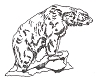 North American Wildlife Designs -  Polar Bear - Crystal Engraving Design