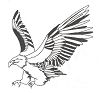 North American Wildlife Designs - Eagle - Crystal Engraving Design