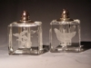 New Items - Crystal Crystal Salt and Pepper Platinum
