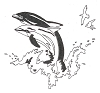 Seascape-Nautical Designs - Dolphins - Crystal Engraving Design