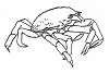Seascape-Nautical Designs - Crab - Crystal Engraving Design