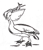 Seascape-Nautical Designs - Pelican - Crystal Engraving Design