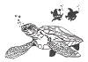 Seascape-Nautical Designs - Sea Turtle - Crystal Engraving Design