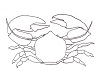 Seascape-Nautical Designs - Porcelin Crab - Crystal Engraving Design