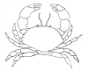 Seascape-Nautical Designs - Cancer Crab - Crystal Engraving Design