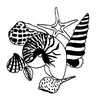Seascape-Nautical Designs - Sea Shell Group - Crystal Engraving Design