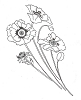 Traditional-Floral Designs - Giant Poppies - Crystal Engraving Design