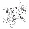 Traditional-Floral Designs - Columbine- A - Crystal Engraving Design