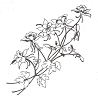 Traditional-Floral Designs - Large Columbine-B - Crystal Engraving Design
