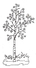 Foliage Designs - Aspen Trees - Crystal Engraving Design