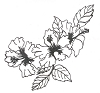 Traditional-Floral Designs - Hybiscus - Crystal Engraving Design