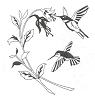 Traditional-Floral Designs - Hummingbird Fushcia - Crystal Engraving Design