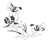 Traditional-Floral Designs - American Wildflower - Crystal Engraving Design
