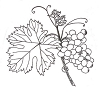 Foliage Designs - Grapes - Crystal Engraving Design