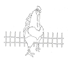 Traditional-Floral Designs - Tuscan Rooster - Crystal Engraving Design