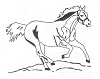 Western-Rodeo Designs - Quarterhorse - Crystal Engraving Design