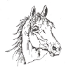 Western-Rodeo Designs - Arabian Horse Head - Crystal Engraving Design