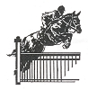Western-Rodeo Designs - Jumper Horse - Crystal Engraving Design
