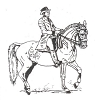 Western-Rodeo Designs - Dressage - Crystal Engraving Design