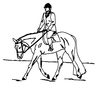 Western-Rodeo Designs - Equitation - Crystal Engraving Design